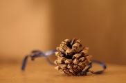 50 Christmas decoration