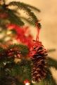 51 Christmas tree