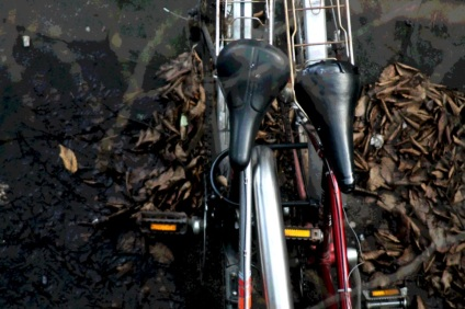 010 bikes from above resized