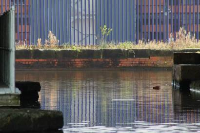038 reflections at Piccadilly basin resized