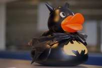 219 racing charidee duck web