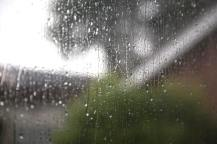 222 rain web