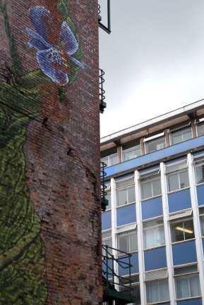 224 more graffiti web