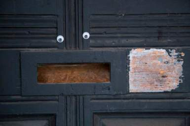 258 a door with a face web