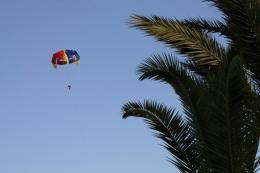 281 parachutist web
