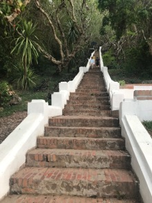 Some of the steps (there are many more)
